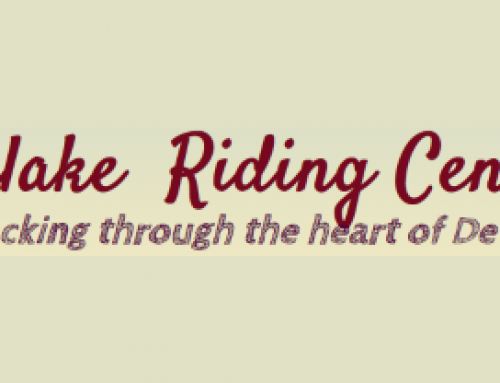 Finlake Riding Centre