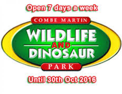 Combe Martin Wildlife and Dinosaurs